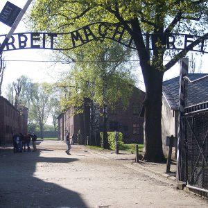 Quel rettangolo verde chiamato Auschwitz